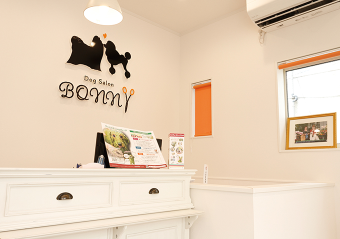 Dog Salon BONN